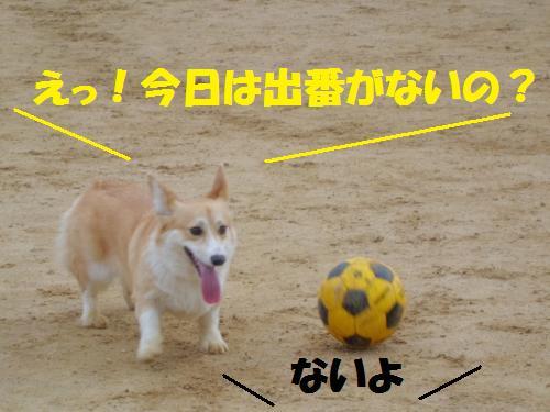 006_convert_20130430001904.jpg