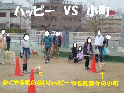 011_convert_20130331232537.jpg