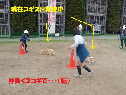 014_convert_20130331233002.jpg