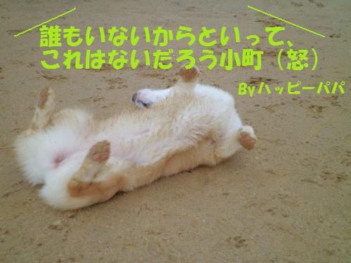 029_convert_20121226230513.jpg
