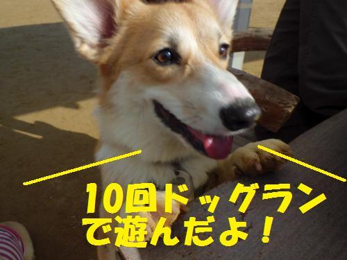 169_convert_20130104224220.jpg