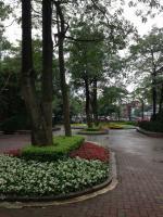 taiwan 大安森林公園2
