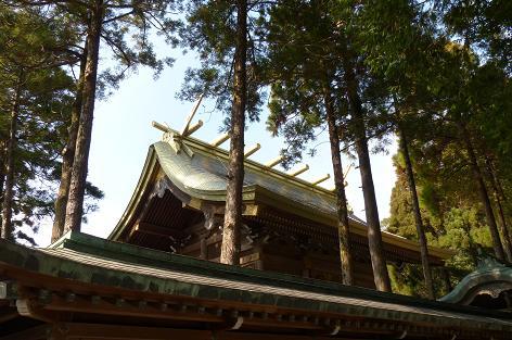 金色の屋根♪