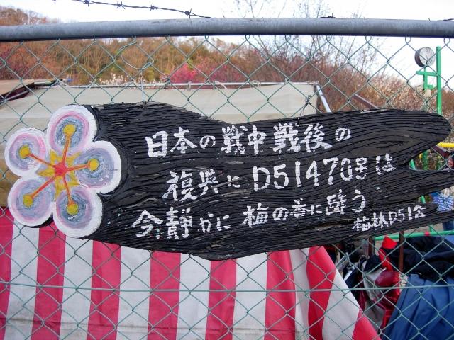 s-DSCN0793.jpg