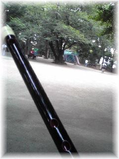 Image1356.jpg