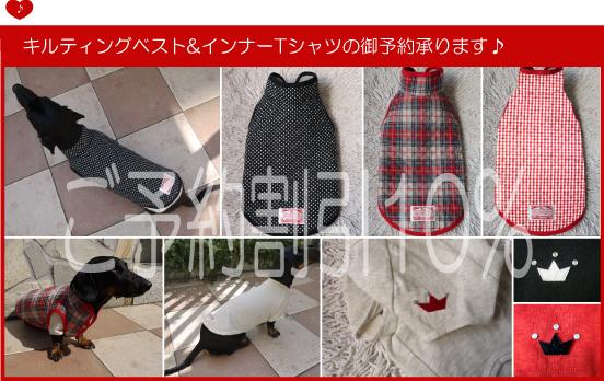 10_20111027212501.jpg