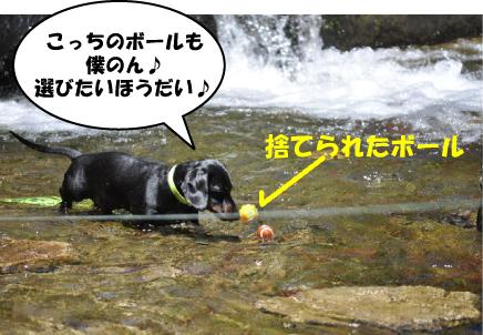 18_20110720000706.jpg