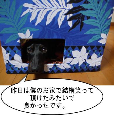 1_20111005221847.jpg