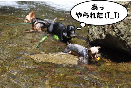 20_20110720000704.jpg