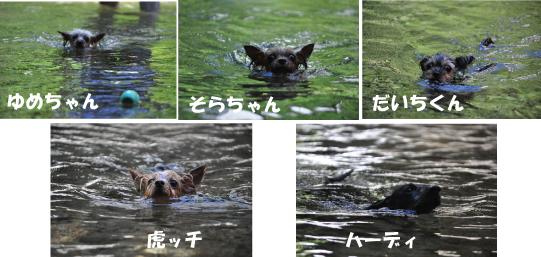 22_20110720000703.jpg