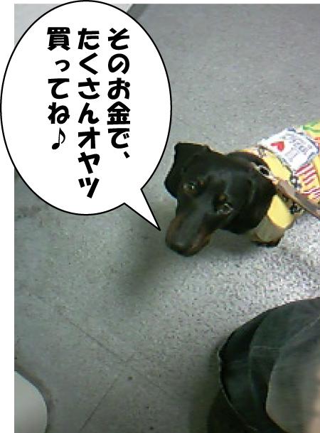 3_20111008135317.jpg