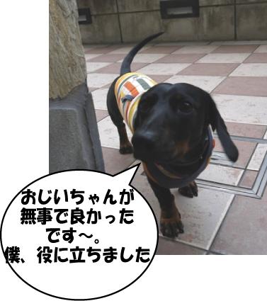 4_20111005224354.jpg