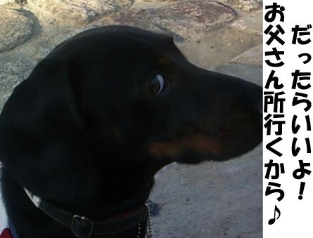 6_20111108211640.jpg