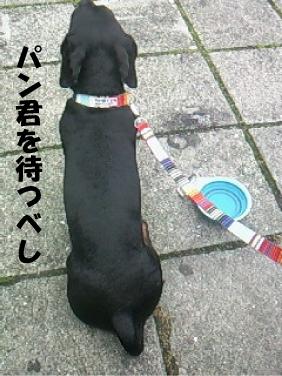 7_20110713025052.jpg
