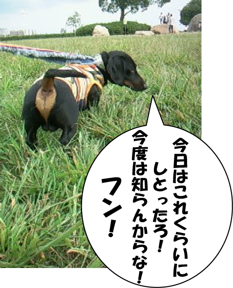 7_20111007023434.jpg