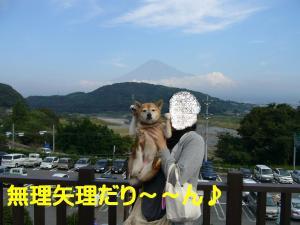 コピー ~ P1020536