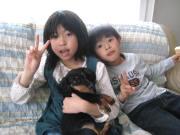 2008・チョコ&はるるん&ぷっちぃ
