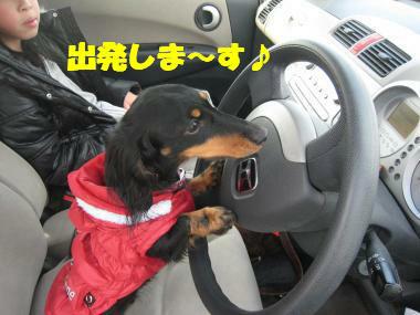 あたちは運転手