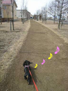 寒いけどお散歩