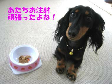早く食べたいよ~!