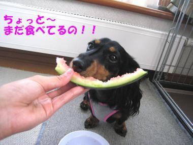 まだ食べてるんだけど!