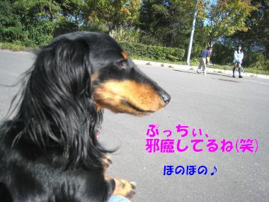IMG_8071-3.jpg