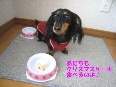 クリスマスケーキを食べるよ!