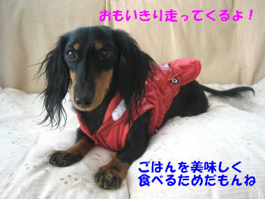 IMG_8408-3.jpg