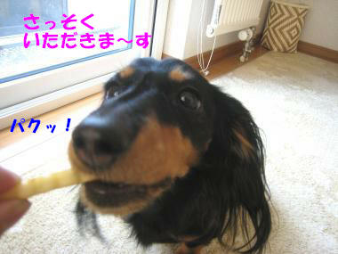 IMG_8553-3.jpg