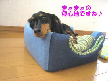 IMG_8559-3.jpg