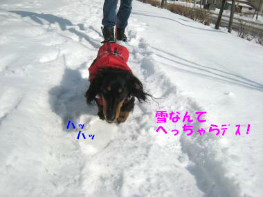 IMG_8605-3.jpg