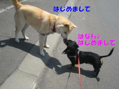 IMG_8881-3.jpg