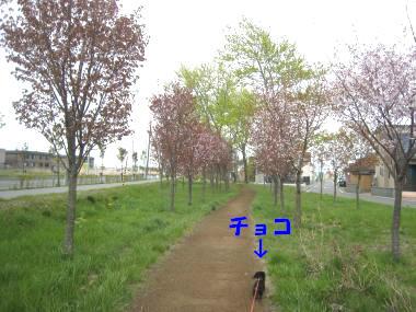 IMG_8891-3.jpg