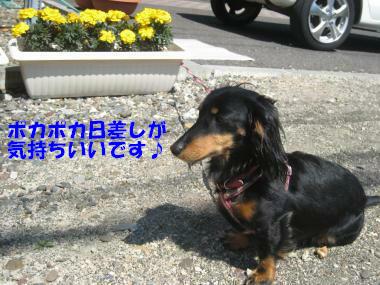 IMG_8970-3.jpg