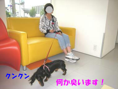 IMG_8978-3.jpg