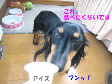IMG_8991-3.jpg