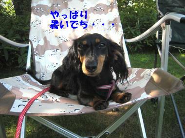 IMG_9075-3.jpg