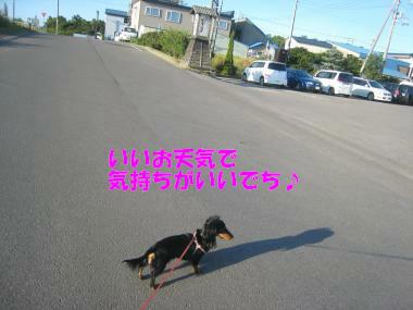 IMG_9120-3.jpg