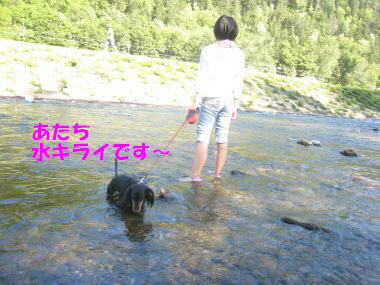 IMG_9127-3.jpg