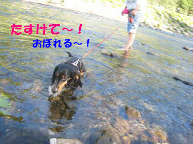 IMG_9128-3.jpg