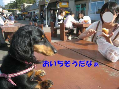 IMG_9224-3.jpg