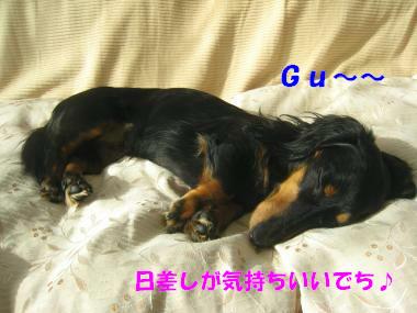 IMG_9291-3.jpg