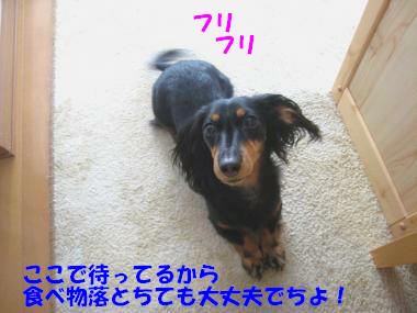 IMG_9309-3.jpg