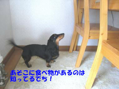 IMG_9314-3.jpg