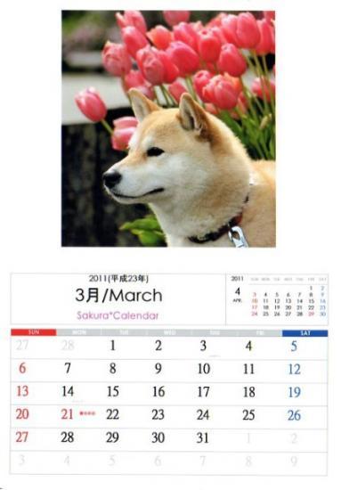 2011さくらカレンダー3月a