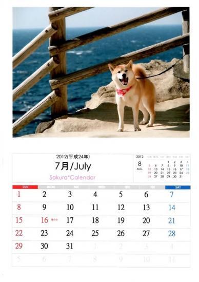 7月さくらカレンダーA