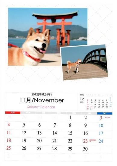 11月さくらカレンダーA