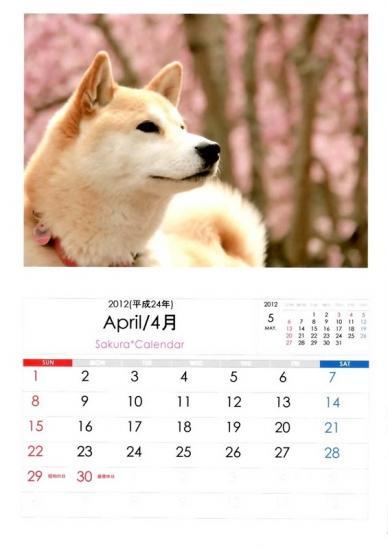 4月さくらカレンダーB