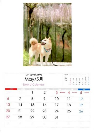 5月さくらカレンダーB