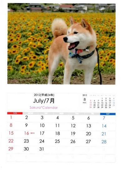 7月さくらカレンダーB